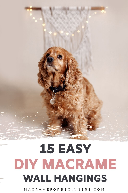 15 DIY Easy Macrame Wall Hangings for Beginners - Macrame For Beginners