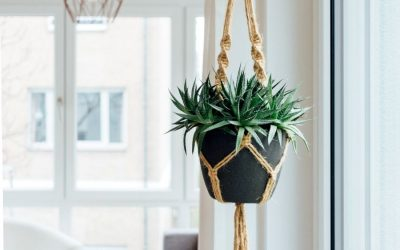 15 Easy DIY Macrame Projects for Plant Lovers