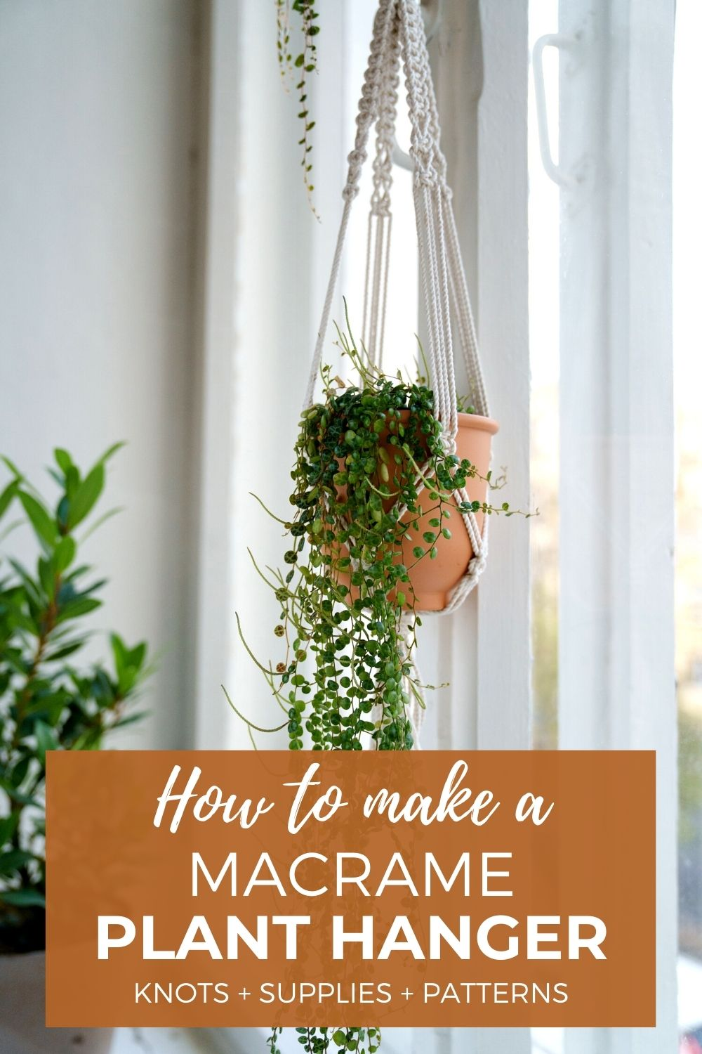 How to Make a Macrame Plant Hanger – Best Tips for Beginners
