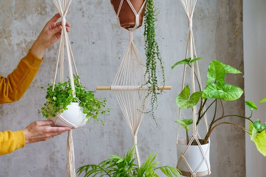 How to Make a Macrame Plant Hanger - Best Tips for Beginners