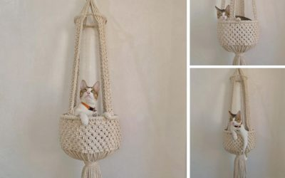 How to Make a Gorgeous Macrame Cat Hammock with Habit Made – Free & Easy Macrame Cat Bed Tutorial